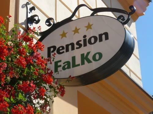 Pension Falko - фото 14