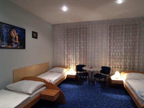 Hotel Pod Spilberkem - фото 5