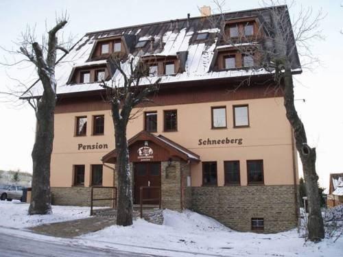 Pension Schneeberg - фото 23