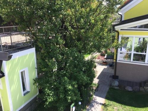 AJO Terrace - фото 13