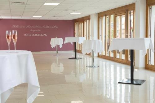 Hotel Burgenland - фото 8