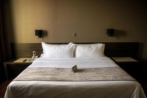 Hotel Brasilia - фото 2