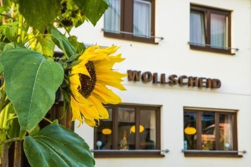 Gasthaus Wollscheid - фото 21