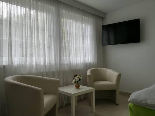 Hotel Milan Vopicka - фото 9