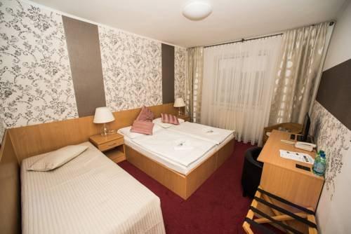 Hotel Maroli Mikulov - фото 6