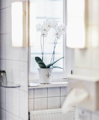 Garni Hotel Drei Lilien - фото 10