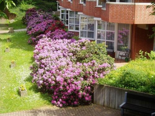 GDA Hotel Hildastift am Kurpark - фото 19