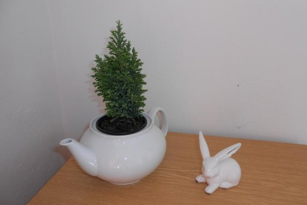 White Rabbit Hall - фото 18