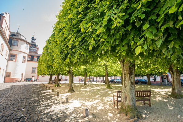 Schlosshotel Weilburg - фото 19
