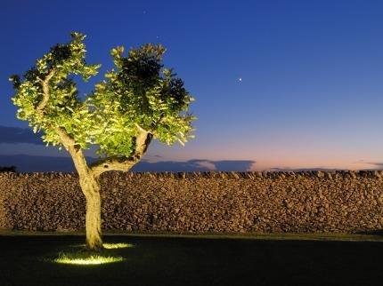Masseria Bagnara Resort & Spa - фото 19