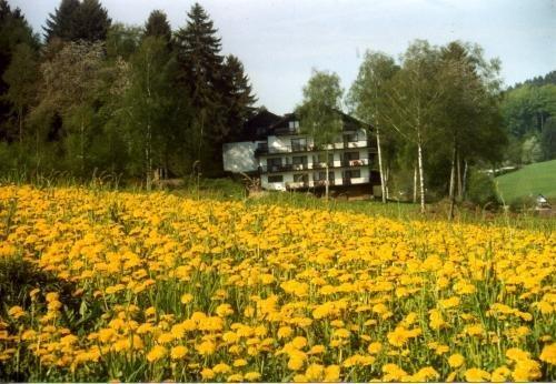 Birkenhof - фото 8