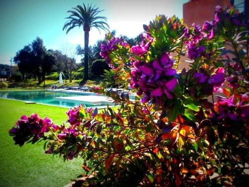 Отель и Спа Sant Pere del Bosc - фото 18