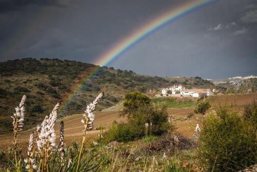 Ronda Mountain Resort - фото 17