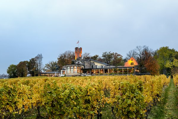 Relais & Chateaux Hotel Burg Schwarzenstein - фото 20