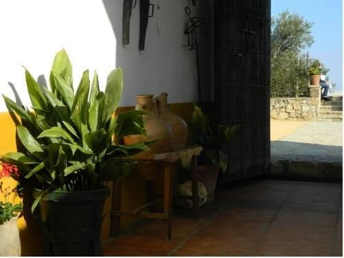 Cortijo el Puntal de Teba - фото 21