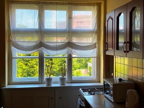 Apartman Flora - фото 10