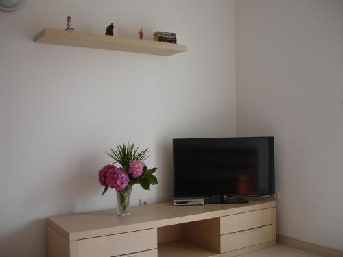 Apartments Dakic - фото 10