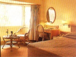Nirula's Hotel - фото 4
