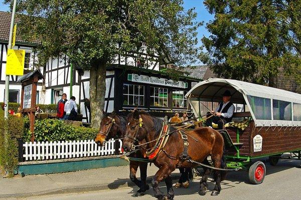 Гостиница «Ponyhof», Виль