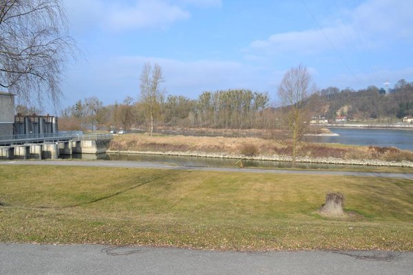 Gasthof s'Schatzkastl - фото 9