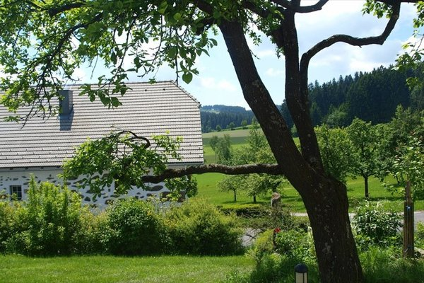 Bauernhof Verwohnbauernhof im Muhlviertel - фото 14