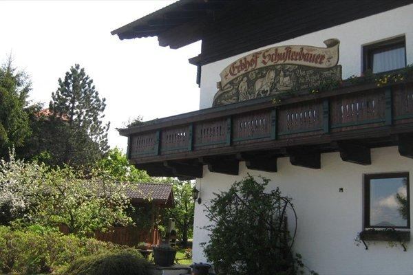 Schusterbauer - фото 22
