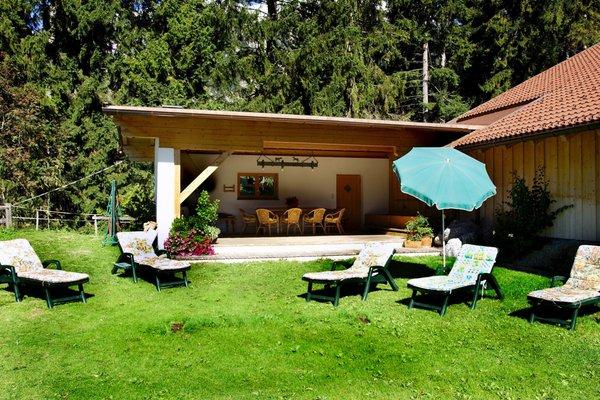 Bauernhof Pferdehof Liedlhof - фото 14