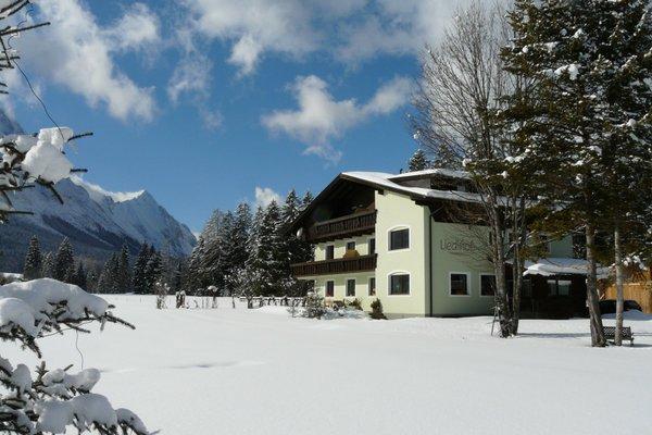 Bauernhof Pferdehof Liedlhof - фото 23