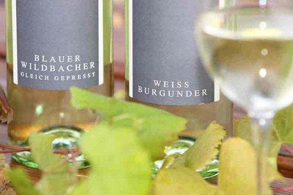 Bauernhof PEISERHOF Wein & Ferien - фото 11