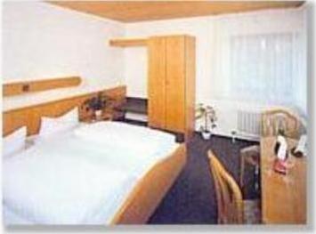 Hotel Waldhorn - фото 7