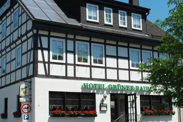 Hotel Gruner Baum - фото 19
