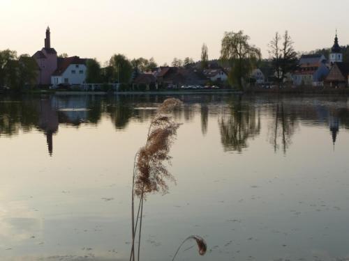 Landgasthof Windfelder am See - фото 17