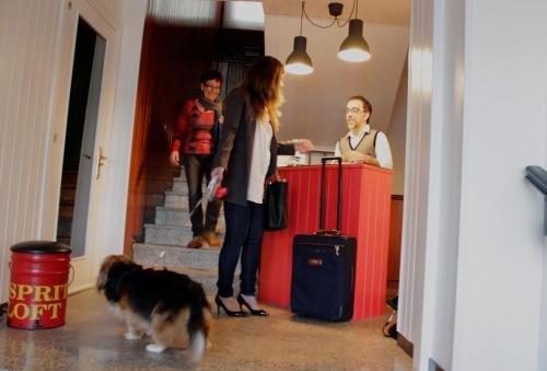 Hotel Coruna Mar - фото 13