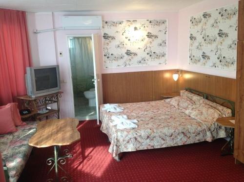 Astra Family Hotel - фото 5