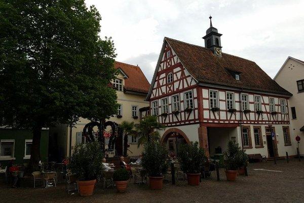 Hotel Ludwigstal - фото 7