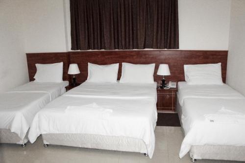 Africana Hotel - фото 50