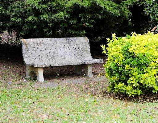 Albergo Ristorante Il Tegolo - фото 8
