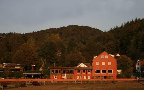 Longhorn Ranch Countryhotel - Garni - фото 14