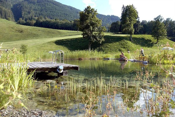 Ski & Bike Hotel Wiesenegg - фото 19
