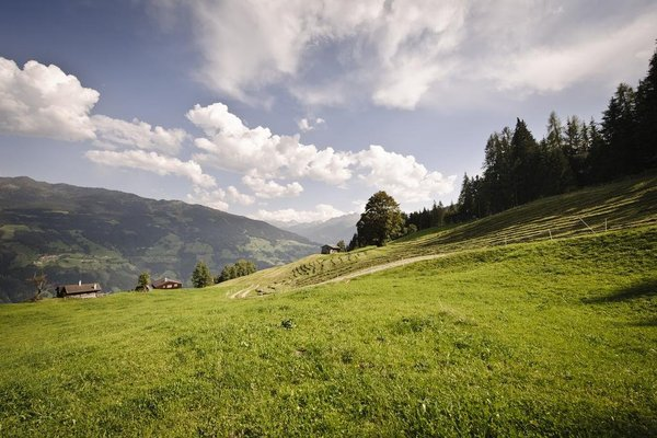 Ferienwohnungen am Riedanger - фото 21