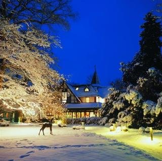 Romantik Hotel Jagdhaus Waldfrieden - фото 21