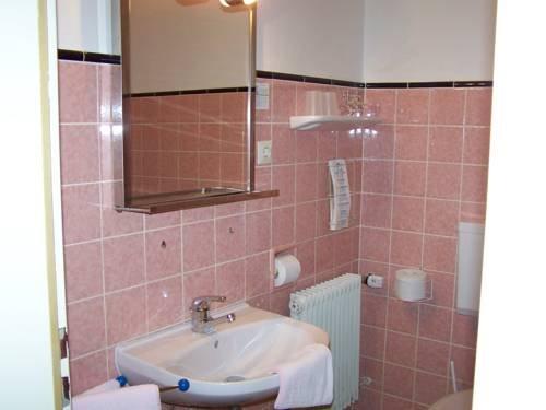 Hotel Tannenhof - фото 11