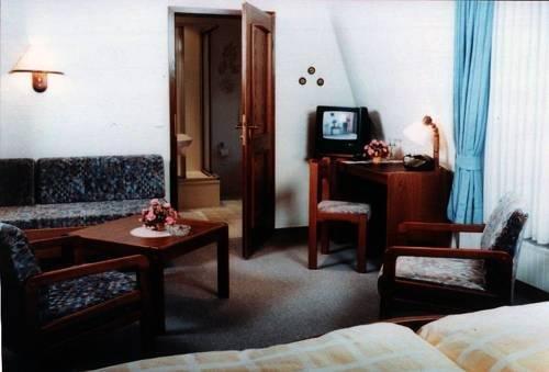Hotel Zum Schwanen - фото 2