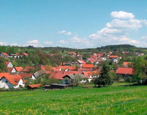 Landgasthof Lang Zum Adler - фото 21