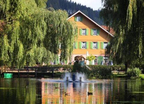 Hotel Zur alten Muhle - фото 22