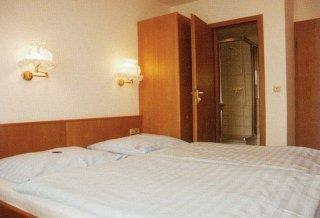Business & Budget Hotel Tessin - фото 3