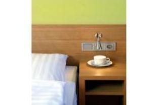 Business & Budget Hotel Tessin - фото 6