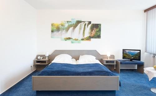Hotel Luisenhof - фото 2