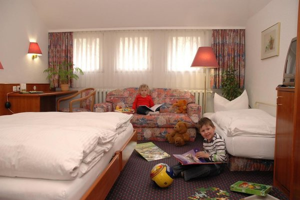 Hotel Goldgrund Meissen - фото 1