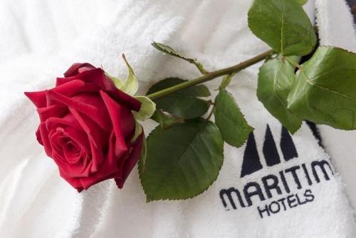 Maritim Hotel Mannheim - фото 20